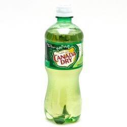 Canada - Dry Ginger Ale - 16.9 fl oz